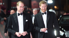 Prince William's 'fears for Harry and Meghan Markle shared by senior royals'