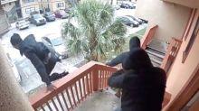 Burglars flee after householder opens fire