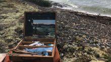 'Magical, dangerous' bear encounter inspires Yellowknife artist