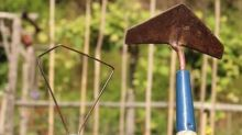 Gardening: For easy, effective weeding, go back to the hoe
