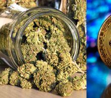 Weekend roundup: Marijuana becomes bitcoin | How investing fads work | Short squeeze candidates