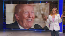 Samantha Bee begs long-shot Democratic presidential hopefuls to run for Senate instead