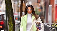 Priyanka Chopra Takes Twinning to the Next Level With Her Adorable Puppy