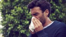 Red pollen alert issued by Met Office as levels to reach season high in coming weeks