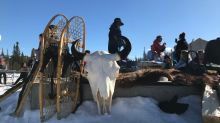 Whitehorse students get trip of a lifetime harvesting a bison