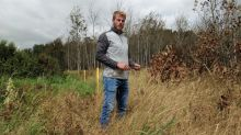 'Worse than oil': Sask. farmers say Husky downplaying damage from salt water leak