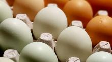 ¿Cómo conservar los huevos una vez comprados?