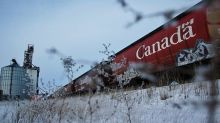 'One hit after another:' Sask. farmers worry CN Rail strike could cause massive grain shipping delays