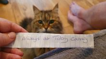 Cheeky Cat Returns Home With Hilarious Note From Toby Carvery Around Its Neck