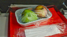 Stunned veggie plane passenger was served this