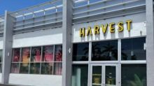 Harvest Opens Eleventh Florida Dispensary in South Miami Beach