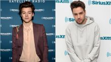 Liam Payne Reacts to Harry Styles's New Music: 'It's Not Something I'd Listen To'