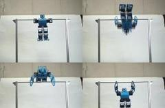 The RB2000 gymnastbot: next step to real robot olympics?