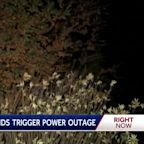 Gusty winds trigger PG&E outages across NorCal