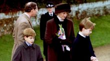 Princess Diana death: Prince Harry and William recall 'very last memory' of their mother