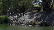 We are suffering too, say NSW irrigators
