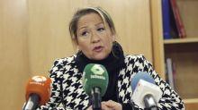 Delegación de la Eurocámara elogia las medidas sociales anunciadas por Chile