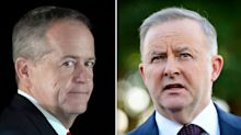 Bill Shorten's 'weird' campaign to stop Anthony Albanese becoming Labor leader
