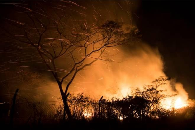 Bolivia's electoral campaign caught fire, as forest fire rages out of control in the Eastern Lowlands