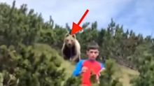Boy, 12, Remains Totally Calm Despite The Massive Bear Creeping Up Behind Him