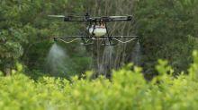Colombia, cada vez más cerca de retomar las aspersiones aéreas con glifosato