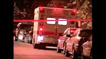 Mother and child fatally shot in Chicago`s Back of the Yards neighborhood