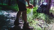 How Safe Is Deet? | Insect Repellent Safety