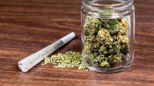 Bad Timing Hits Marijuana's Newest ETF