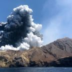 New Zealand eruption: Doctors order 1.2 million sq cm of skin for White Island victims
