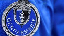 Sept Britanniques en garde à vue pour avoir foncé sur un gendarme à Paris