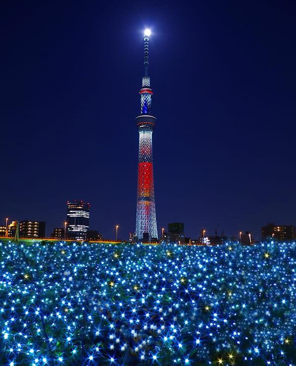 東京晴空塔在燈海上閃爍,照亮整個東京!(圖片來源/hopetrip)