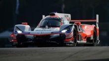 IMSA Petit Le Mans 2020: DPi-Streckenrekord und Pole für Acura