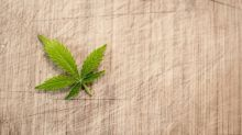 Cannabis Stocks: Do CTST, HEXO, and IIPR Look Cheap?