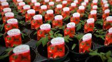 Ökonomen stellen Rückgang der Supermarktpreise durch Mehrwertsteuersenkung fest