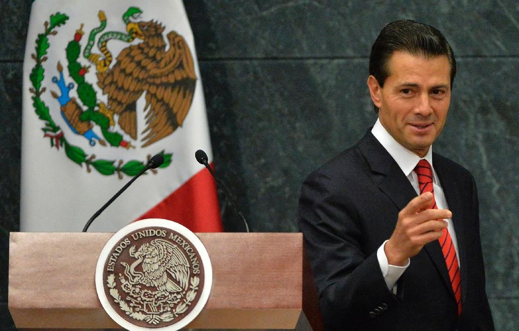 Mexico's President Enrique Pena Nieto has created a new federal police force and imprisoned or killed several drug kingpins (AFP Photo/PEDRO PARDO)