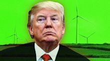 Trump just a blowhard on windmills, lawmakers say of 'idiotic' comments