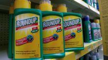 Acciones de Bayer caen más de 12 pct tras nuevo fallo adverso por su herbicida Roundup