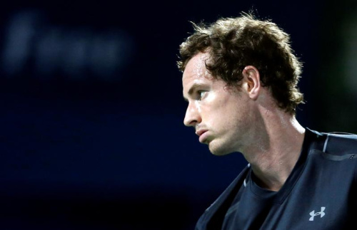 Murray forfait contre la France