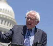 Bernie Sanders Definitely Won Vermont's Democratic Senate Primary