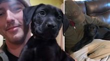 'Two deaf boys and their adventures': Man to share experiences with puppy he taught to sign