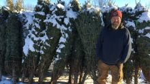 Cut off from customers, tree lot's season saved by neighbours