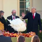 Trump pardons Thanksgiving turkey 'Corn'