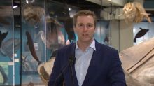 New home for New Brunswick Museum to further uptown renewal: mayor