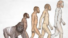 Teach evolution – but not in a moral vacuum | Letters