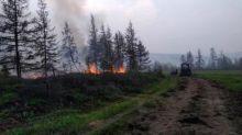 """La récente canicule en Sibérie """"presque impossible"""" sans le changement climatique, avertissent des chercheurs"""