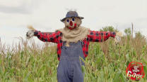 Scarecrow Prank, Wrong Hose Gag, Notepad Stuck in Butt