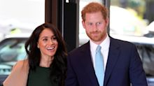 Meghan Markle and Prince Harry follow 12 charity Instagram accounts for '12 days of Christmas'