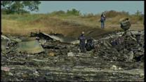 Inspectors Gain Access to Malaysia Air MH17 Wreckage Site