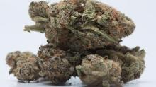 No more new cannabis retail licences due to pot supply shortage: Alberta