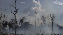 Governo anuncia suspensão de operações contra desmatamento na Amazônia e queimadas no Pantanal